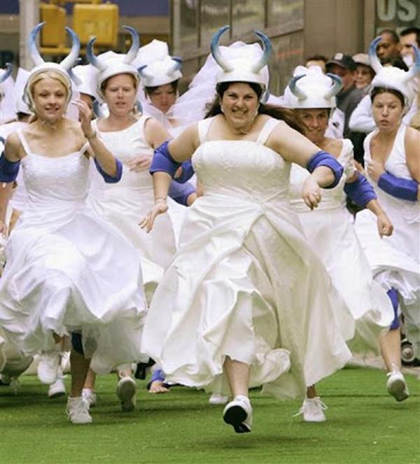 140 The maids ideas   the maids, dresses, bridesmaid dresses